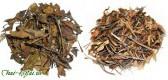 Выбираем белый чай - особенности и разновидности