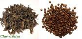 Зелёный чай или кофе – выбора нет