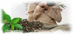 Зелёный чай при язве