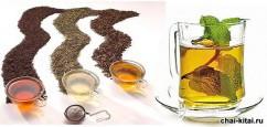В поисках лучшего зеленого чая